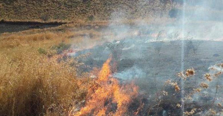 300 hectáreas afectadas. Foto: Jessica Padilla.