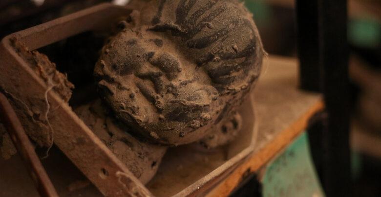 La fábrica posee más de mil moldes de muñecas; todos tienen rasgos distintos y un nombre con el que son identificados.