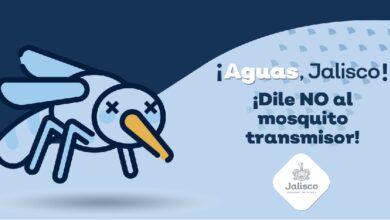 Campaña contra el dengue. Foto: Gobierno de Jalisco.