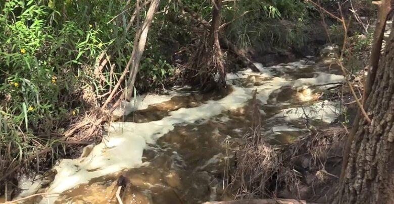 Arroyos de Ayotlán. Foto: Captura de video.